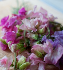 Freshly picked sweet peas